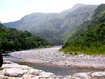 Cangrejal river and rainforest