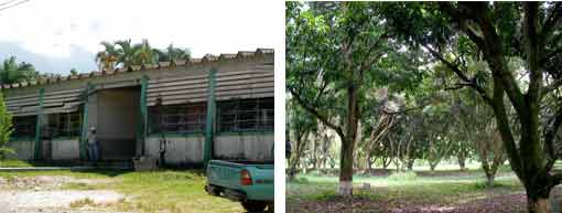 CURLA building and germ bank or fruit tree orchard